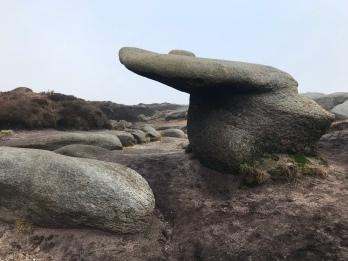 Woolpacks stones