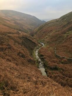 Grinds brook path