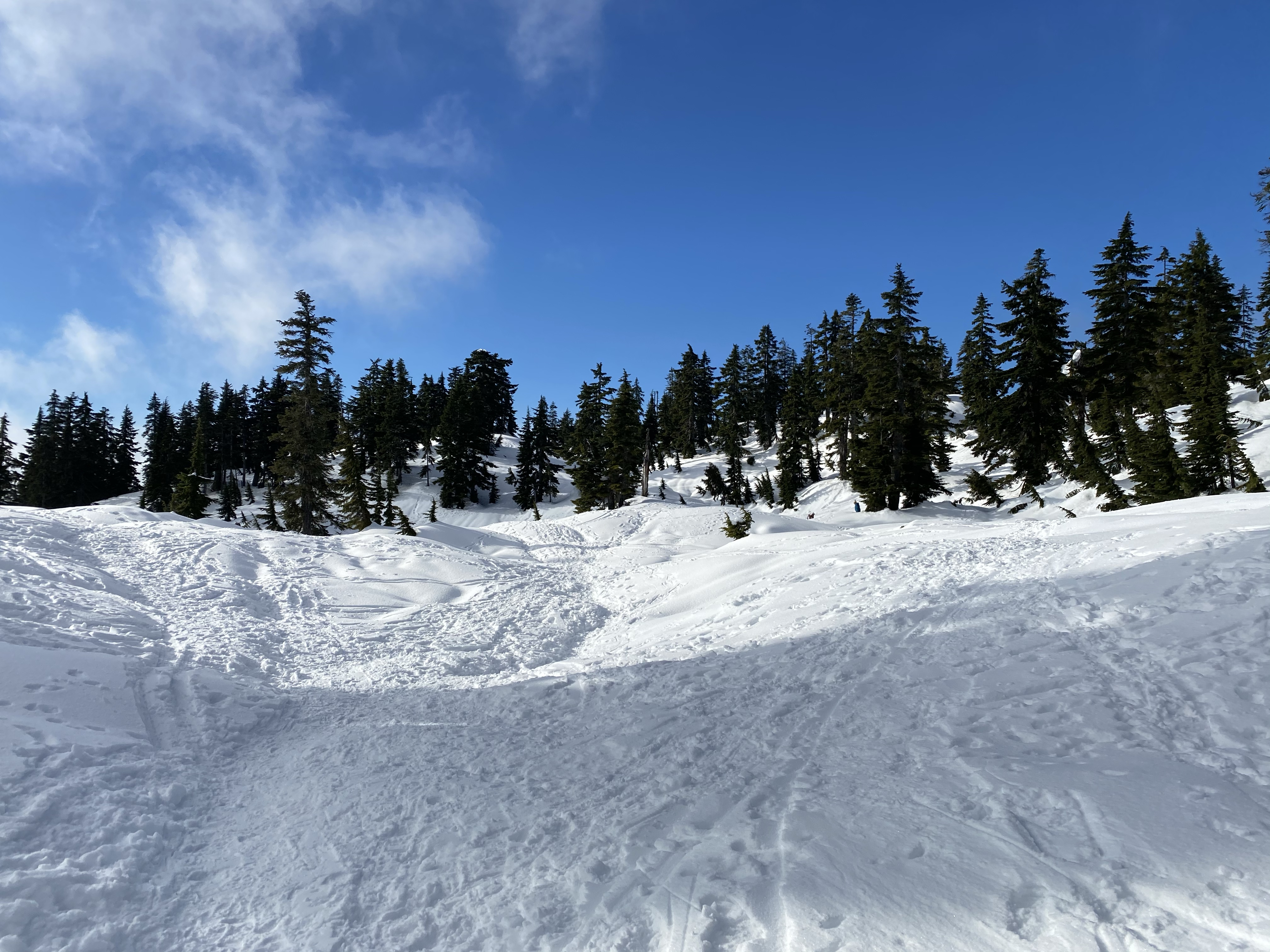 Cypress Mountain Snowshoeing