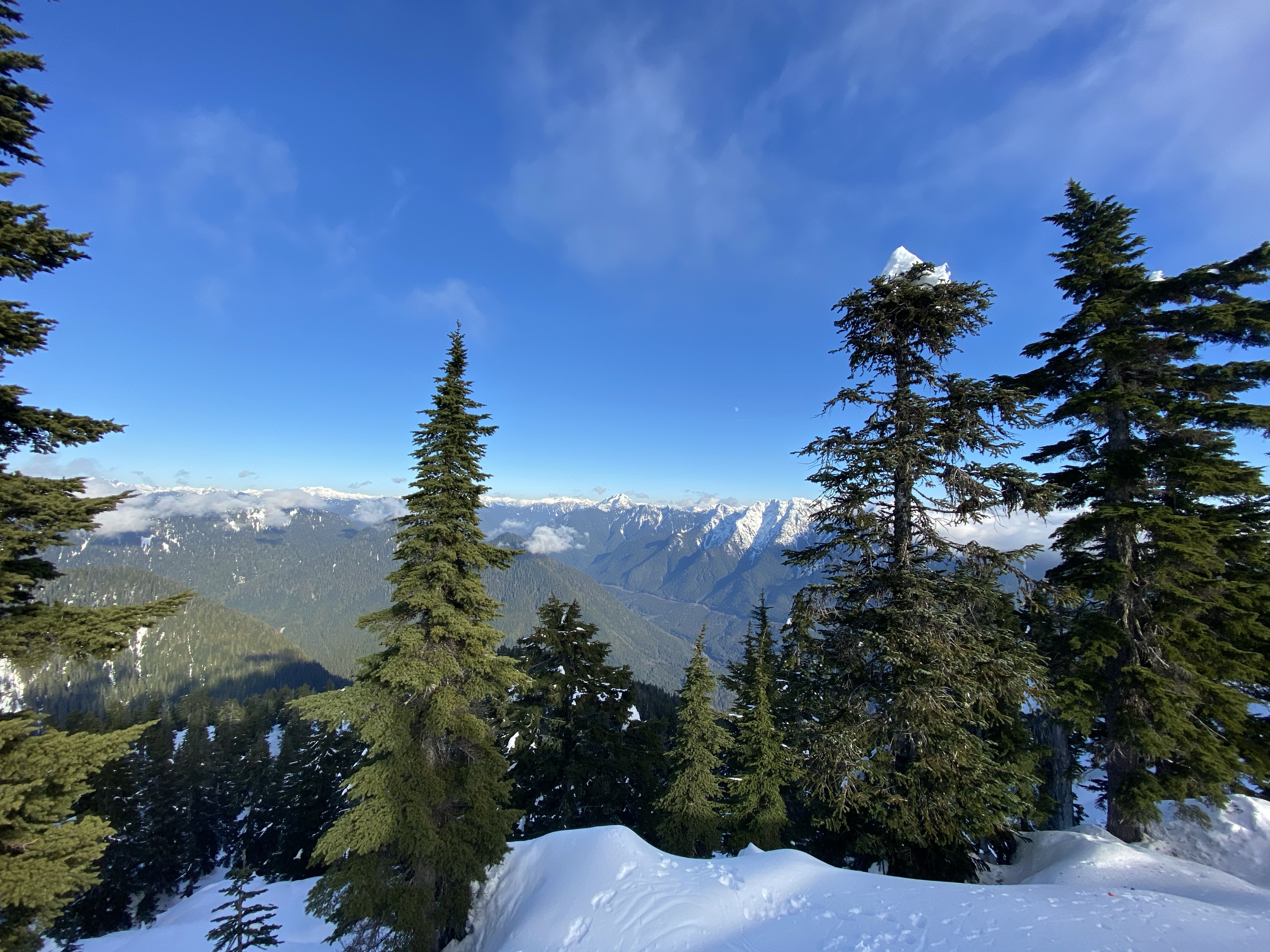 Top of Hollyburn Mountain British Columbia